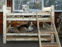 image of photos of dog bunk beds