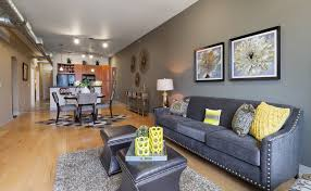 houston modern grey couch living room