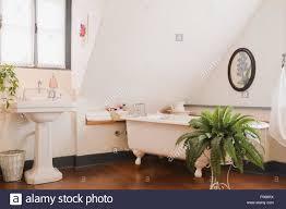 Waschbecken Sie Auf Einem Sockel Und Einer Rolltop Badewanne Im