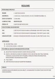 Curriculum Vitae Builder Beauteous Resume Totally Free Resume Builder And Downloader