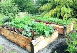 how to make a raised garden. How To Make A Garden Bed Raised Beds Best Way Build . Former