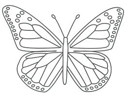 Butterfly Outline Drawing Special Offer Free Printable Butterfly