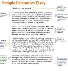 example of essays com example of essays