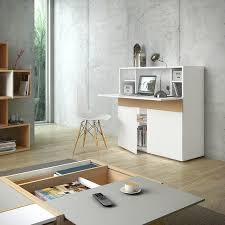 hidden home office. Focus Hidden Home Office Contemporary-home-office-and-library A