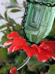 plastic spoon bottle hummingbird feeder shabby beach nest
