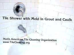 removing bathtub caulk how to remove mold from shower curtain get rid of mildew in bathroom removing bathtub caulk