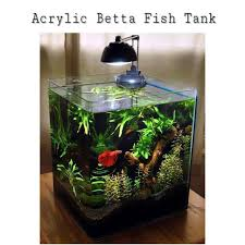 betta fish tanks. Wonderful Tanks Intended Betta Fish Tanks A