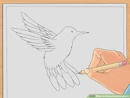 simple hummingbird drawing. Plain Drawing Image Titled Draw Hummingbirds Step 6 For Simple Hummingbird Drawing