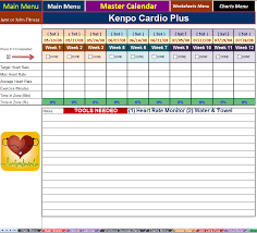 Excel Spreadsheet | Workout Manager for P90X PLUS