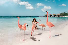 It belongs to the realm of the kingdom of the netherlands, which consists of a european state, the netherlands. The Ultimate Aruba Travel Guide Adaras Blogazine