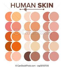 Skin Human Vector Various Body Tones Chart Realistic Texture Palette Illustration