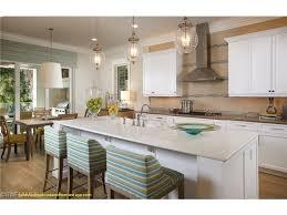 kitchen cabinets naples fl for home design new kitchen cabinets naples fl