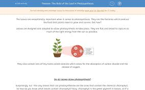 The Role Of The Leaf In Photosynthesis Worksheet Edplace