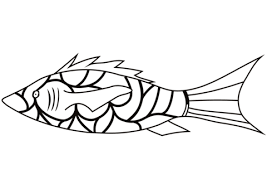 coral reef fish drawing. Wonderful Fish Coral Reef Fish Coloring Page With Drawing L