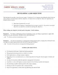 Examples Of Objectives On Resumes Objective In Resume Krida 58