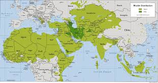 """Résultat de recherche d'images pour """"carte du monde musulman"""""""