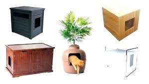 Decorative Cat Litter Box Cat Litter Box Enclosure Cat Litter Box Furniture Petsmart 88