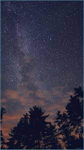 Night Sky Stars Milkyway Wood Nature ...