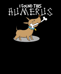 I Found This Humerus Funny Dog Pun Joke Digital Art by Jonathan Golding