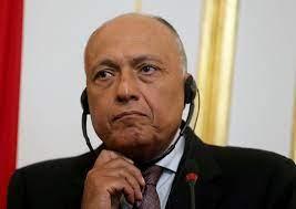 سامح شكري: اتفاق أردوغان والسراج لا يمس مصالح مصر لكنه يعقّد الوضع - RT  Arabic