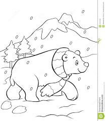 Libro Da Colorare Dellorso Polare Illustrazione Vettoriale