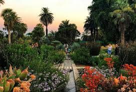 5 gorgeous botanical gardens in l a to