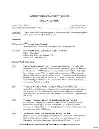 Resume Sample Resume For Lvn