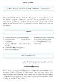 Profesional Resume Format – Mycola.info