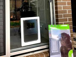 extra large dog door for glass and screens single
