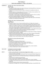 Net Developer Resume Sample Senior NET Application Developer Resume Samples Velvet Jobs 33