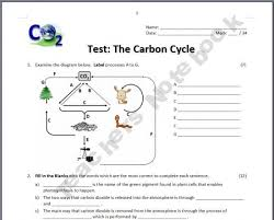 the carbon cycle test th th grade life  carbon cycle essay pictures water carbon and nitrogen cycle worksheet toribeedesign