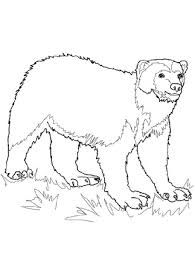 Small Picture wolverine animal coloring pages coloring kids Pinterest