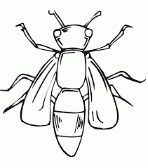 awful firefly coloring pages for kids the very lonely colouring page printable free general size 1920
