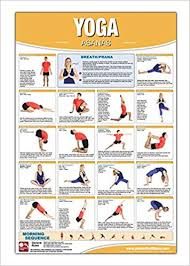 Back Workout Chart Step By Step Yoga Asana Poster Chart Laminated Yoga Poster Yoga Chart