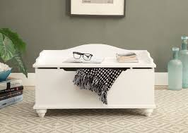 astonished storage chest bench buy storage for living room with blanket and  carpet and books and