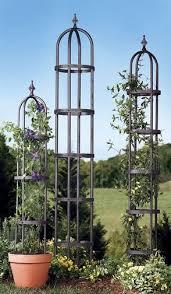 jardin jasmin garden obelisk 84
