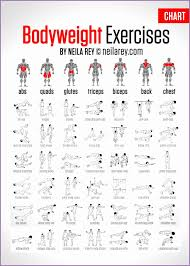 Bodybuilding Chart Free Download Bodybuilding Exercises Chart Free Download Csexha Awesome