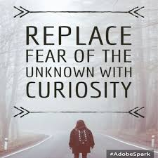 Curiosity Quotes Curiosity Quotes QUOTES OF THE DAY 88