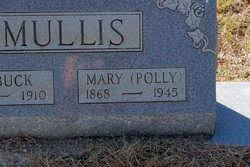 "Mary Ann ""Polly"" Willis Mullis (1868-1945) - Find A Grave Memorial"