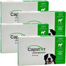 this review is from4 pack capstar green for dogs over 25 lbs 24 tablets