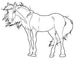 Kleurplaten Honden En Paarden