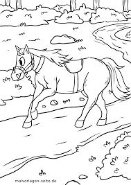 Kleurplaat Paard Gratis Kleurpaginas Om Te Downloaden