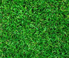 artificial grass texture. Grass Texture. Green Texture \\u2014 Stock Photo Artificial
