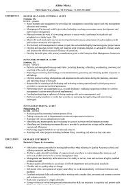 Manager Internal Audit Resume Samples Velvet Jobs