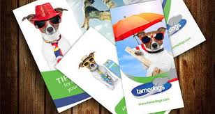 Templates For Brochures Free Download 30 Free Brochure Templates For Download 2017