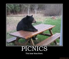 Patient Bear / Bear Sitting At Table | Know Your Meme via Relatably.com