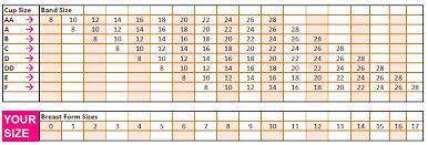 Breast Prosthesis Size Chart Optimal Intimates