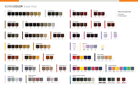 Kenra Toner Color Chart Www Bedowntowndaytona Com