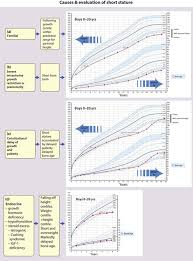 Bone Age Growth Chart Growth And Puberty Clinical Gate