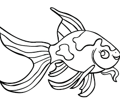 Betta Fish Coloring Pages Sh Coloring Pages Page Of Rainbow Medium